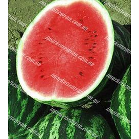 Целин F1 семена арбуза раннего 1 000 семян Clause/Клоз