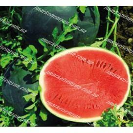 Ромерия F1 семена арбуза 1 000 семян United Genetics