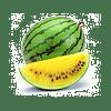 Оранж Кинг F1 семена арбуза ультрараннего желтого NongWoo Bio