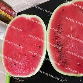 Ледус F1 семена арбуза 1 000 семян Lark Seeds/Ларк Сидс