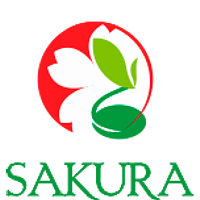 Sakura/Сакура