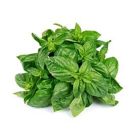 Зеленопряных семена