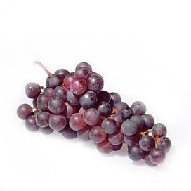 Виноград: выращивание, уход, защита