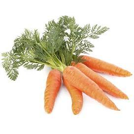 Морковь: выращивание, уход, защита