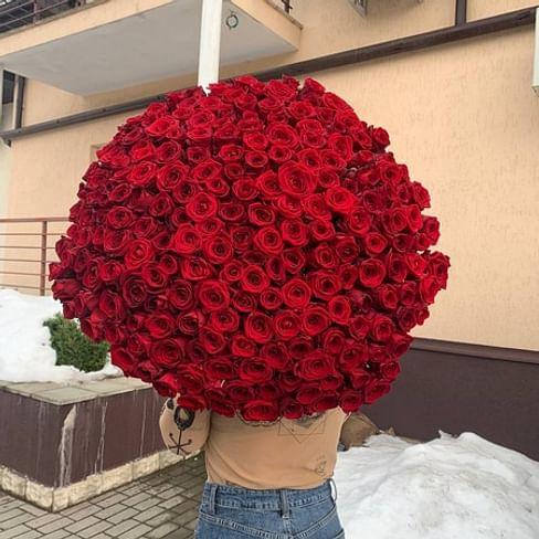 """Букет роз """" Твоя звезда """" 201 роза"""
