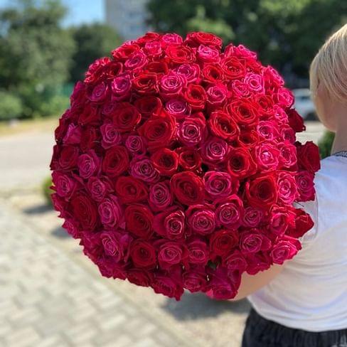 Букет роз КИНГ 101 роза