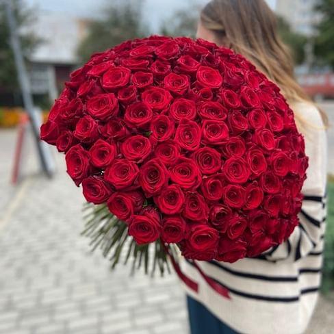 151 Красная роза 50см