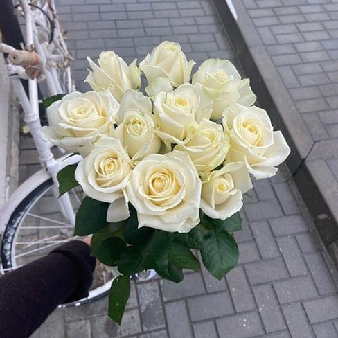 Белые розы 11 роз