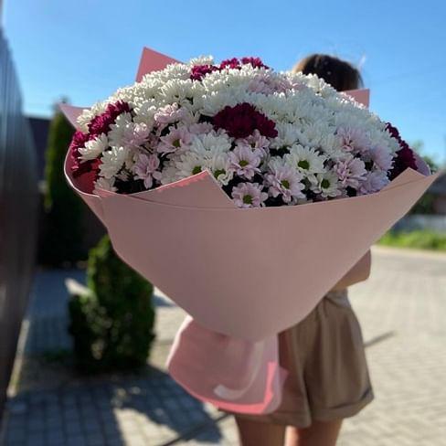 Пышный букет хризантем (41шт)