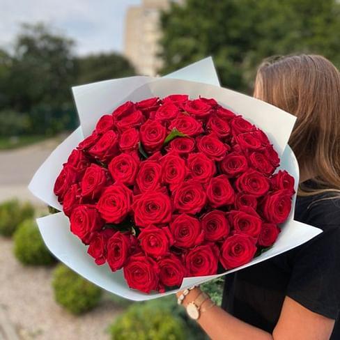 Шикарный букет алых роз 51 роза
