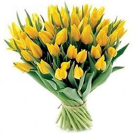 41 Желтый тюльпан