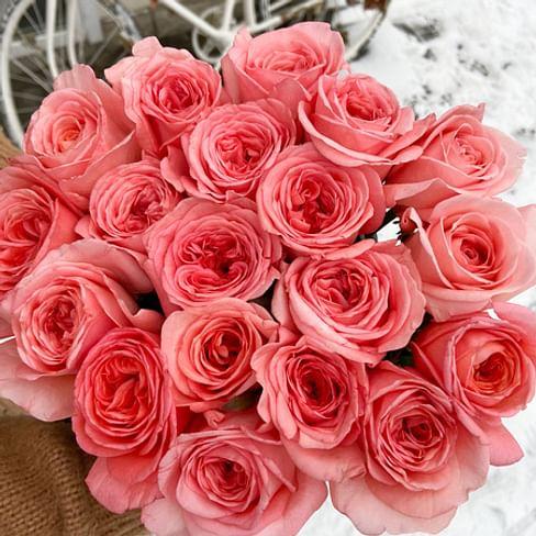 Пионовидная роза London Eye