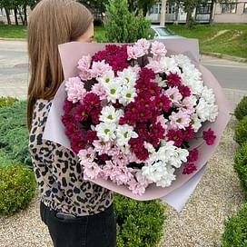 """Букет хризантем """"Мармелад"""" 15шт"""