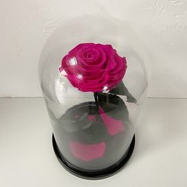 Роза в колбе Малиновая (Standart+)