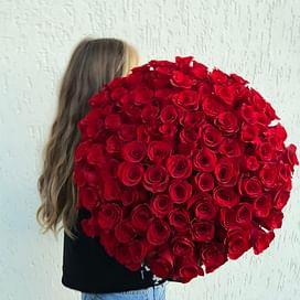 Букет из 101 розы Эквадор 60см