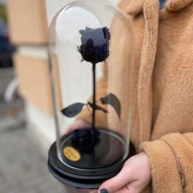 Роза в колбе Premium синяя