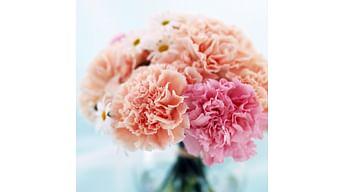 Какие цветы дольше стоят в вазе?