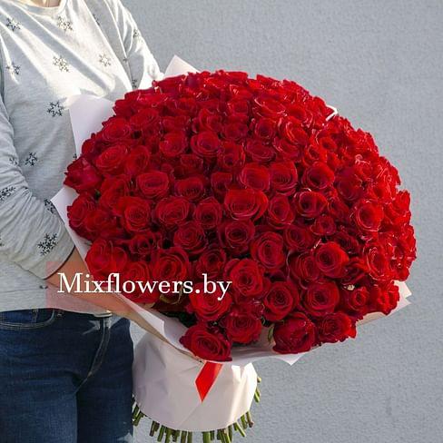 "Букет роз ""Red"" 50 см АКЦИЯ 101 роза Эквадорская роза"