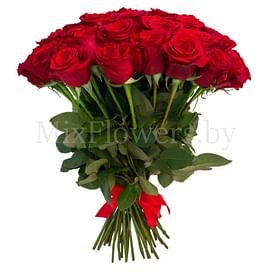 """Букет роз """"Бархат"""" 31 роза"""