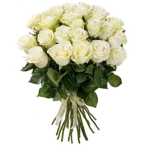 35 белых роз сорта Mondial 35 роз Эквадорская роза