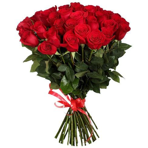 "Букет красных роз ""Танзания"" 35 роз Эквадорская роза"