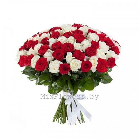 "Букет роз ""Мэган 101 роза Эквадорская роза"