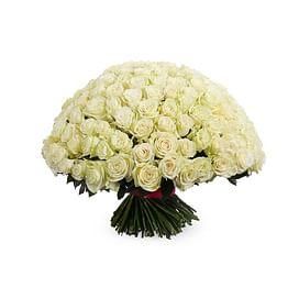 "Букет роз ""Айсберг"" 151 роза Эквадорская роза"