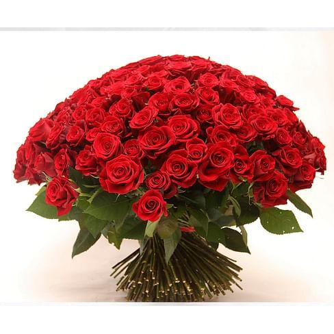 """Букет роз """"Максимум счастья"""" 151 роза Эквадорская роза"""