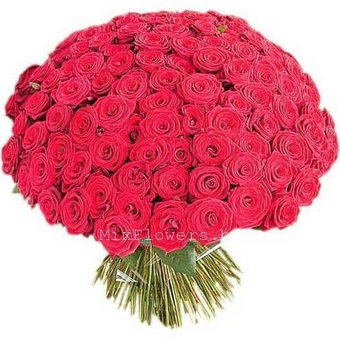 "Букет роз ""Big Red"" 201 роза Эквадорская роза"