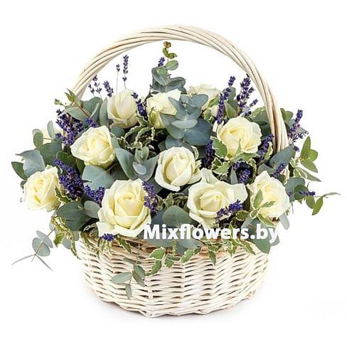"""Корзина роз """"Белая"""" 21 роза Эквадорская роза"""
