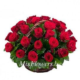 """Корзина роз """"Встреча"""" 35 роз Эквадорская роза"""