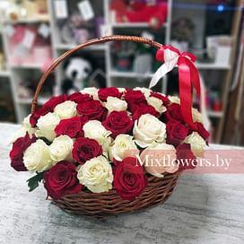 "Корзина роз ""Бело-красная"" 51 роза Эквадорская роза"