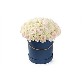 51 роза White O Hara