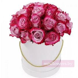 """Розы в коробке """"Фуксия"""" 35 роз"""
