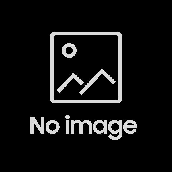 Букет из 19 красных роз с зеленью и оформлением 50 см