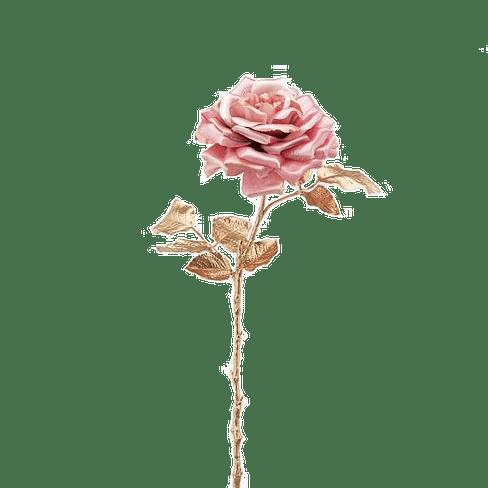 Роза EDG Enzo De Gasperi Арт.214921,55