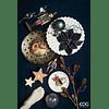 Новогоднее украшение EDG Enzo De Gasperi DEC.ILLUMINAT. Арт.682971,01