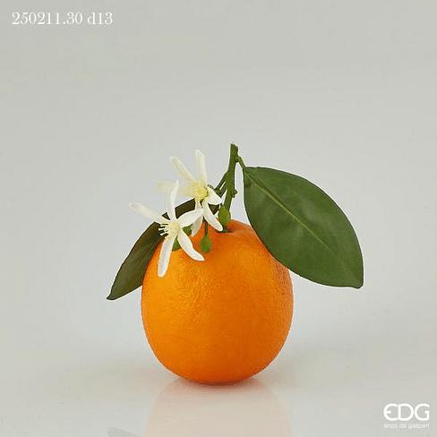 Апельсин EDG Enzo De Gasperi Арт.250211,3