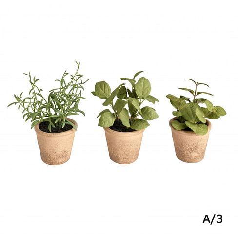 Травы в горшке SIA Арт.SIA-5039