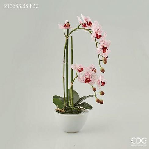 Орхидея в горшке EDG Enzo De Gasperi Арт.213683,58