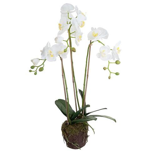 Орхидея во мху SIA Арт.060185