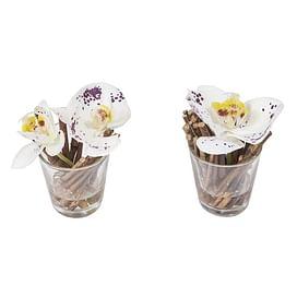 Орхидея в воде SIA Арт.093925