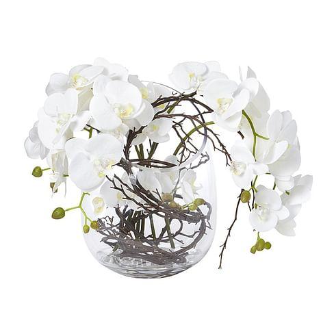 Орхидея в стекле SIA Арт.093945