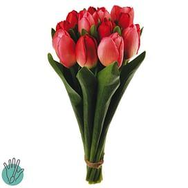 Букет Тюльпанов SIA Арт.41169