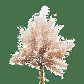 Арундо тростниковый сухой EDG Enzo De Gasperi Арт.232679,39