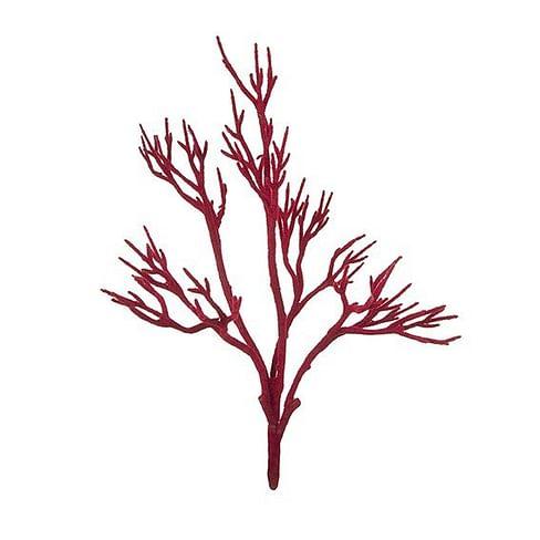 Коралл SIA Арт.141621