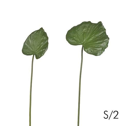 Набор листьев SIA Арт.190199