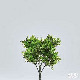 Самшит ветка EDG Enzo De Gasperi Арт.231653,7