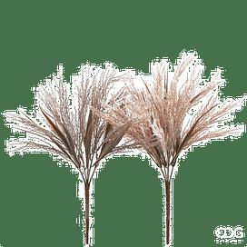 Пампасная трава сухая EDG Enzo De Gasperi Арт.232567,95