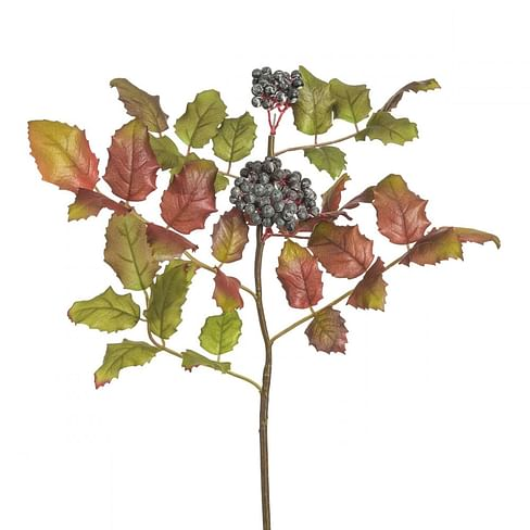 Горный виноград SIA Арт.150150